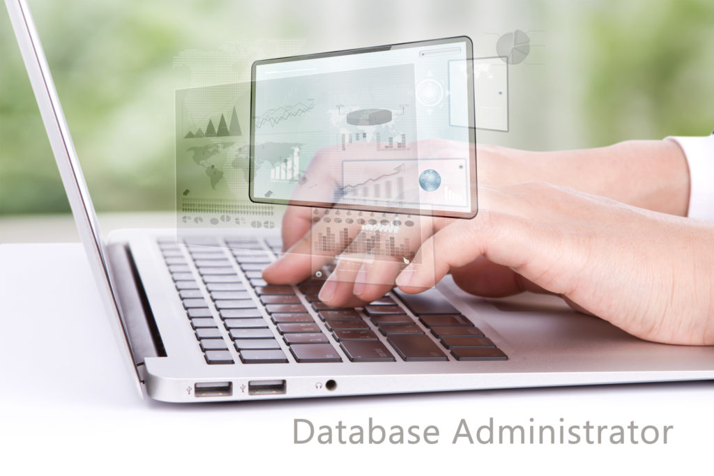 the role of database administrator Database administrator: i coordinates all the activities of the database system the database administrator has a good understanding of the enterprise's information.